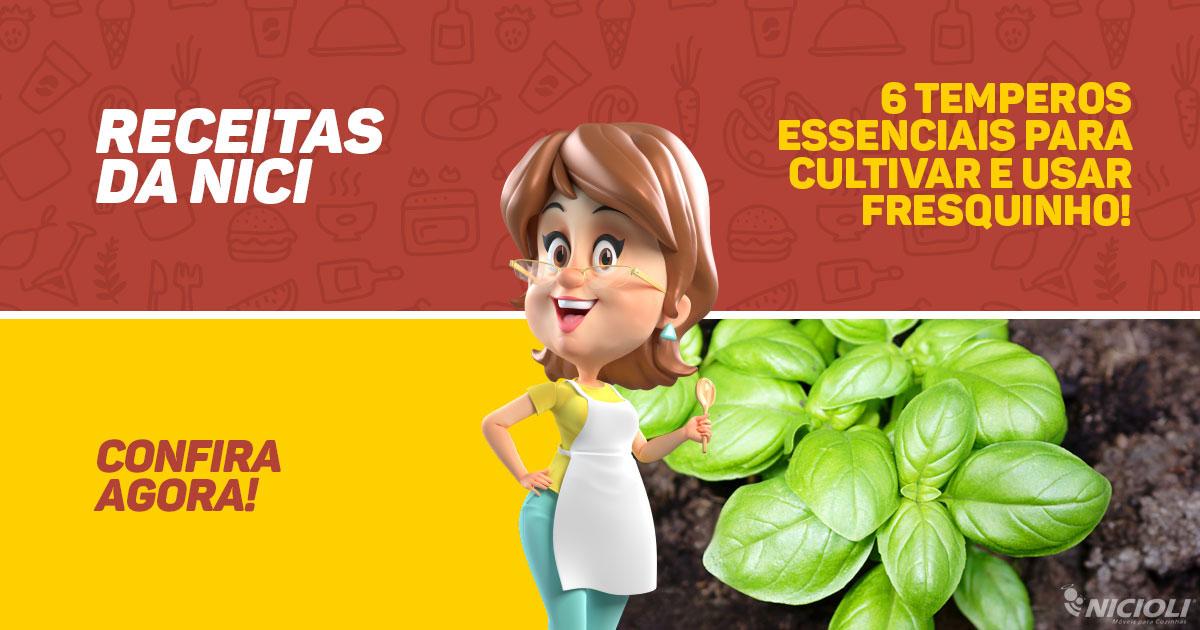 6 temperos essenciais para cultivar e usar fresquinho!